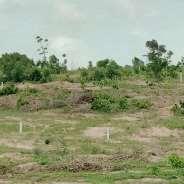 Affordable and litigation free land at kasoa Ojobi